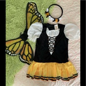 *Girls Monarch Butterfly Halloween Costume Large